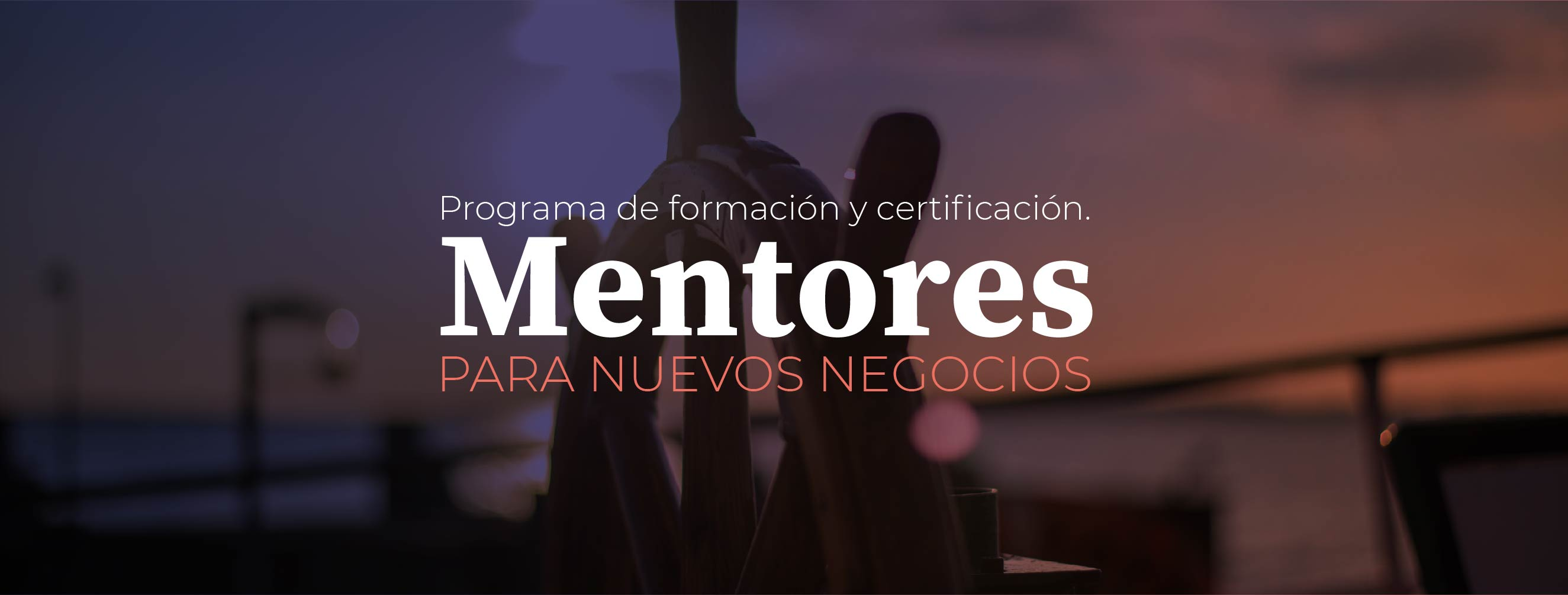 mentores udd ventures