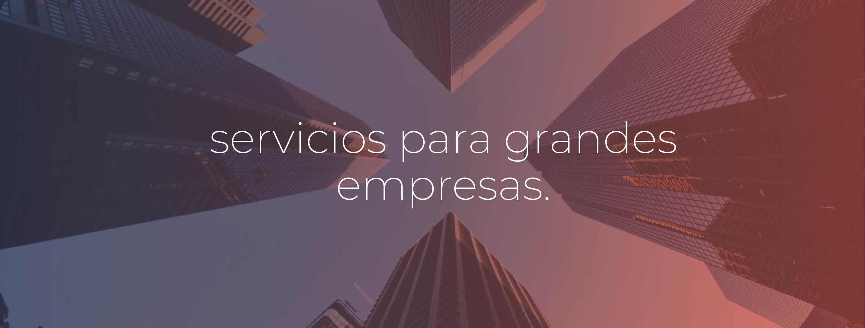 servicios grandes empresas-13-1