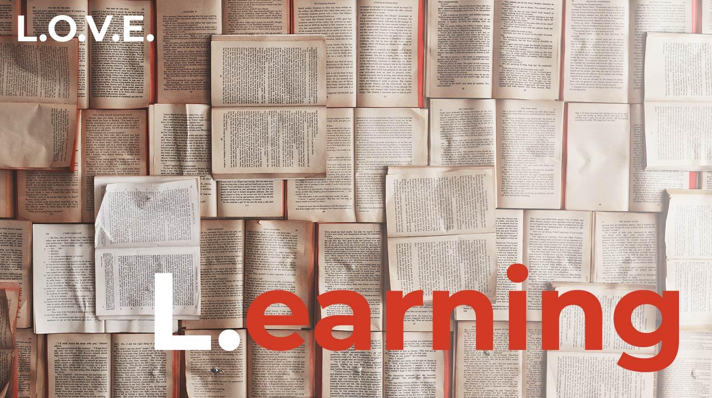 L.O.V.E. del emprendimiento en tiempos de Crisis / Learning.