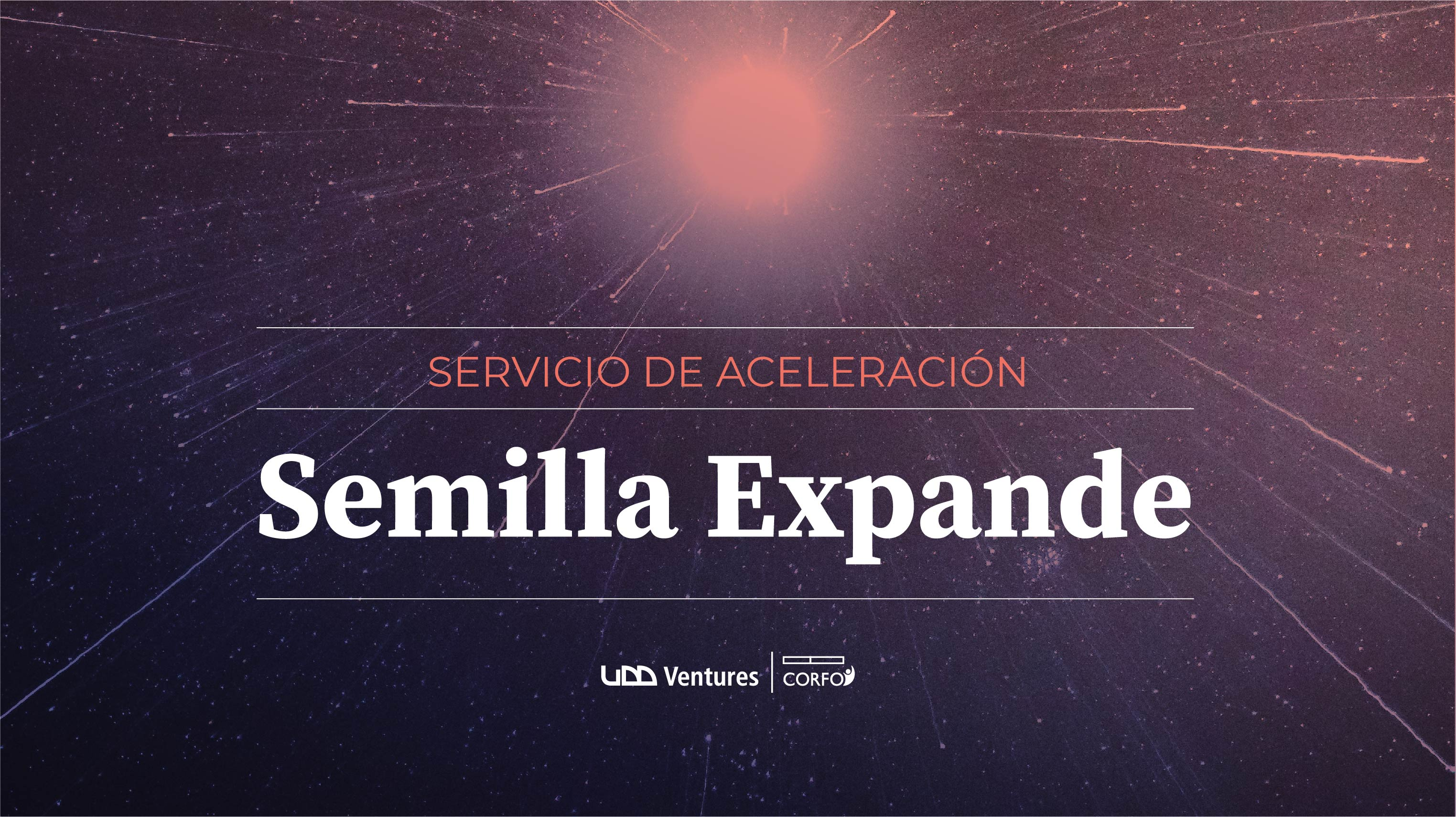servicio semilla expande-02