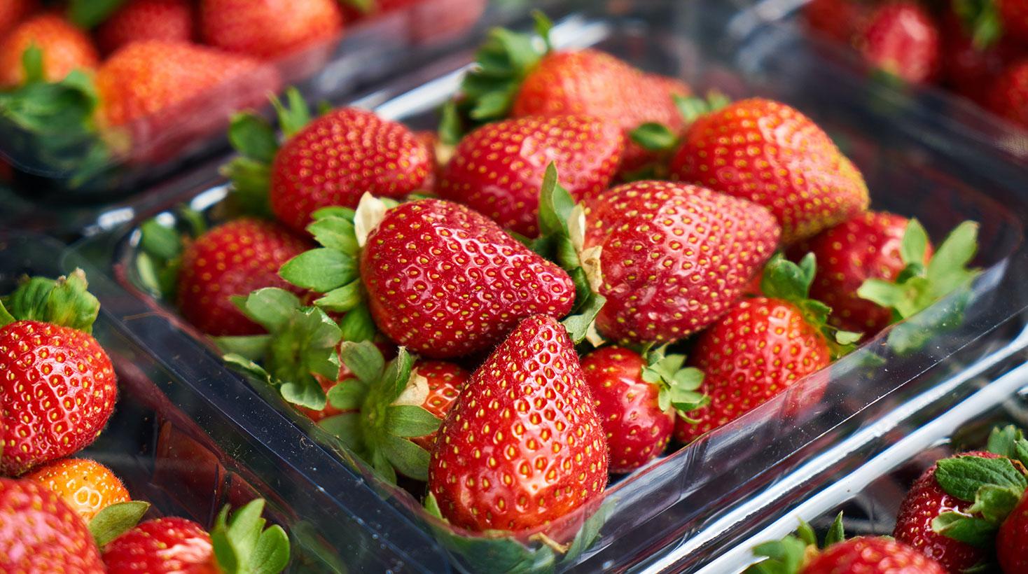 UNK, el emprendimiento que evita la pérdida de grandes cantidades de alimentos.